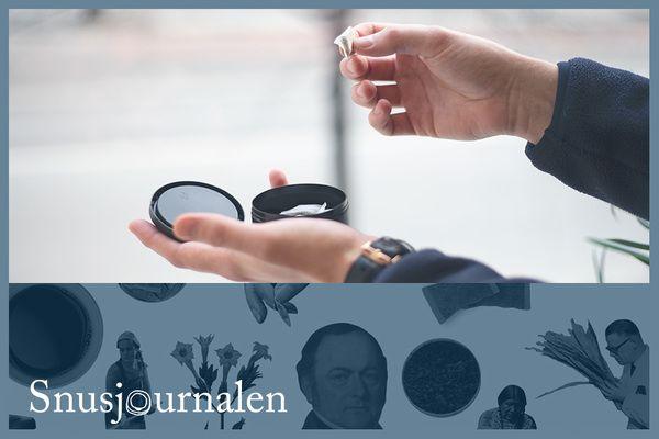 Brister i utredning om nikotin- och tobaksprodukter
