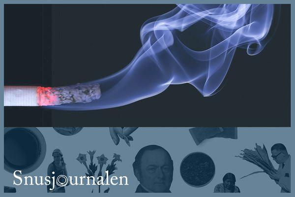 Efterfrågar ett reellt alternativ för kvarvarande rökare