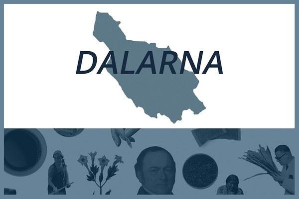 Så här snusar man i Dalarnas län