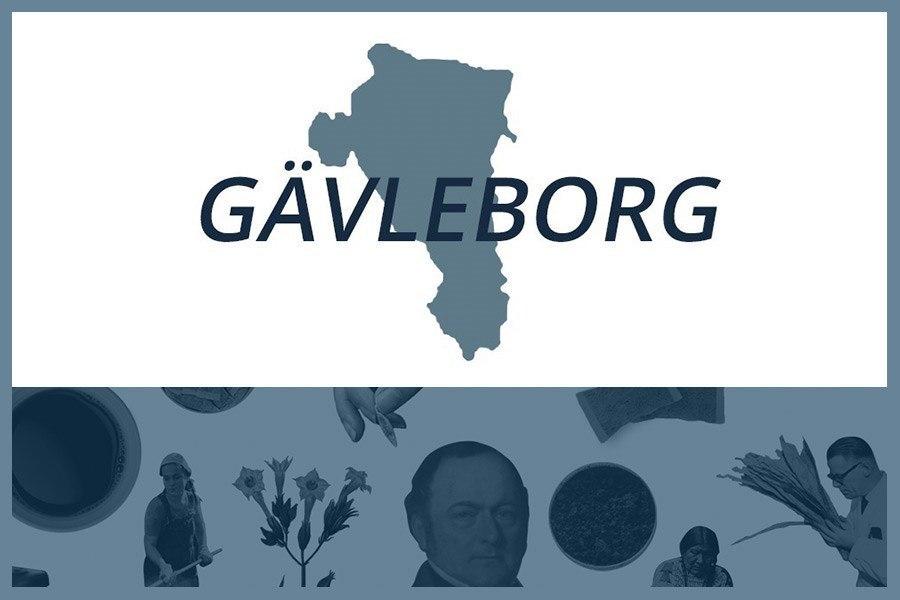 Så här snusar man i Gävleborgs län