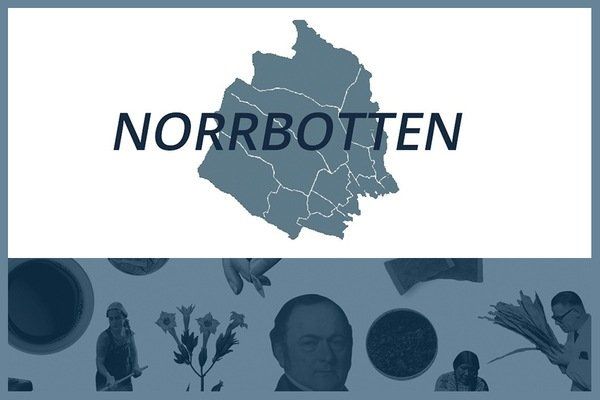 Så här snusar man i Norrbottens län