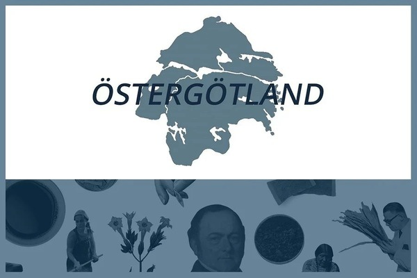 Så här snusar man i Östergötlands län