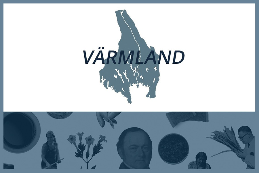 Så här snusar man i Värmlands län