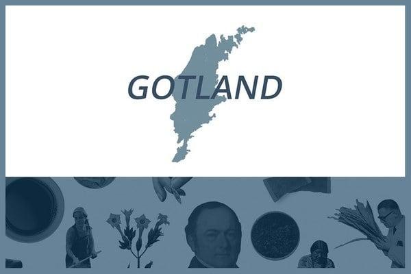 Så här snusar man på Gotland