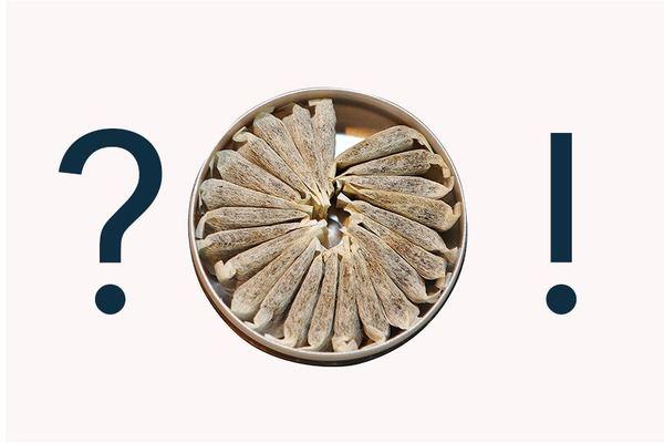 Vad är snus? Snusjournalen förklarar snus så alla förstår!